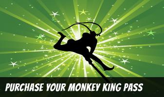 monkeyking-pass